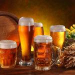Бизнес-идея: как открыть мини пивоварню с нуля