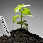 Поиск инвесторов в малый бизнес. Как найти инвесторов для малого бизнеса.