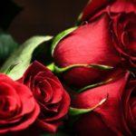 Как открыть цветочный бизнес с нуля