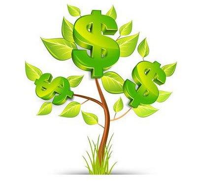 Дерево на котором растут деньги доллары