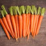 Выращивание моркови в открытом грунте как бизнес