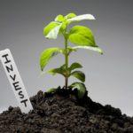 Как найти инвесторов для малого бизнеса