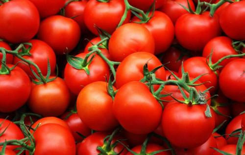 Красные, спелые помидоры