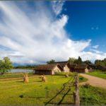 Каким выгодным бизнесом можно заняться в сельской местности