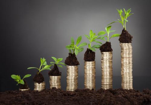 Деньги, из которых растёт зелень