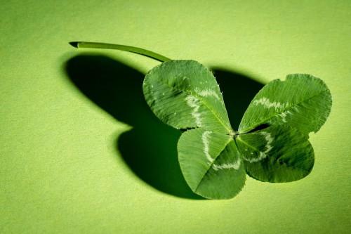 Листочек клевера на зелёном фоне